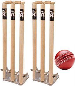 CA Sports Cricket Printemps Retour estompes Lot de 2avec boule gratuit