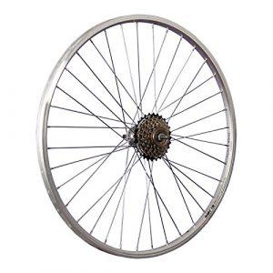 Taylor Wheels 26 pouces roue arrière vélo YAK19 roue libre à visser 6 argent