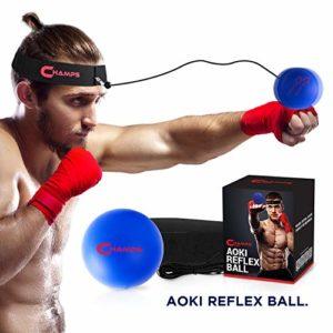 Champs Boxing Reflex Ball Fight Vitesse d'entraînement Vidéo d'entraînement Exclusive. Apprenez Les Techniques de Base des Arts Martiaux, Perdez du Poids, Améliorez Votre Temps de réaction (Beginner)