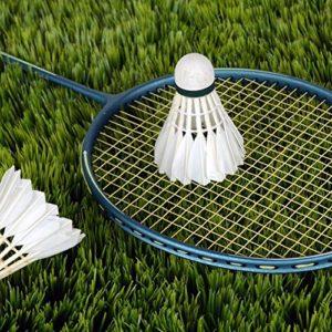 Fantasyworld 3 x Formation Plumes de Canard Blanc Badminton Birdies Ball Jeu Sport Divertissement Produit Balles de Badminton avec Can
