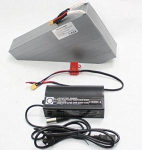 HYLH Batterie au Lithium de vélo électrique de Cellule PANA 3.7V puissante 24V 52.2AH Batterie Triangle Li-ION Ebike avec Carte et Chargeur BMS gratuits