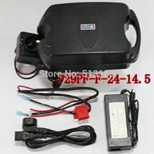 HYLH Batterie de Li-ION de Tige de siège de 24V 14.5Ah avec Le Chargeur Libre de Conseil de BMS dans la Batterie au Lithium de Cas Noir pour la Bicyclette électronique d'Ebike