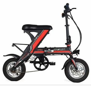 NEWTRY Vélo électrique Pliable 30,5 cm Durance Portable Petit Tram au Lithium Super Power avec Noyau au Lithium Haute densité de Classe A (48 V/8,8 AH/250 W)