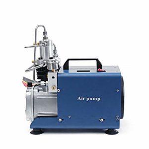 Rtyrytiiu Dispositif Compresseur d'air à Haute Pression de gonfleur de compresseur d'air de 220V 30MPA 4500PSI électrique