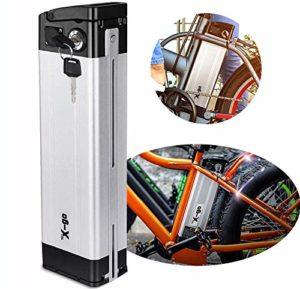 X-go Batterie E-Bike 36V Batterie Li-ION 36V 10Ah Approprié pour Moteur De VéLo 350W (Décharge)