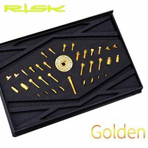 BIKERISK 36 PCS/Set vélo Vis Tige en Alliage de Titane Vis de Fixation Tige de vélo de Montagne Vélo Vis de Fixation Disque boulons Accessoires,d'or