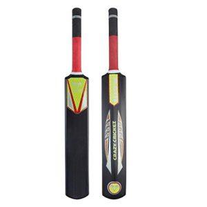 Ram Batte de Crazy Cricket (5)