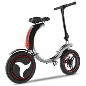 RXRENXIA Vélo Électrique, Cadre en Alliage D'aluminium Portable Batterie Vélo Pliant Facile Pliant Et Carry Poids Ultra Léger, Scooter Extérieur Voyage,Gris
