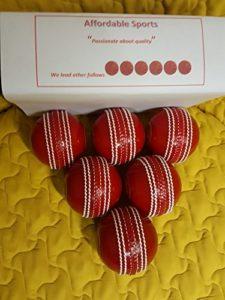 SA Cricket 'Incrediball' multi-actions Practise Balles [Lot de 6]–Excellente Aide à l'entraînement pour tous les lecteurs (emballage Peut varier)