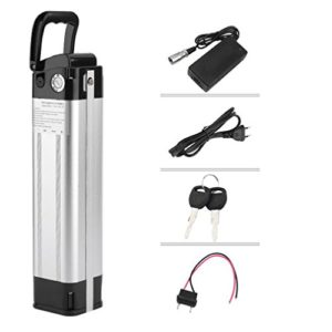 Dpower Prophete Kit vélo électrique Pedelec avec câble de Chargement, kit Batterie Li-ION (Lithium-ION) 24 V 13,2 AH 342W