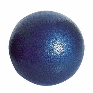 Visiodirect Poids Scolaire en Fonte Coloris Bleu – Poids 2 kg – Diamètre : 80 mm