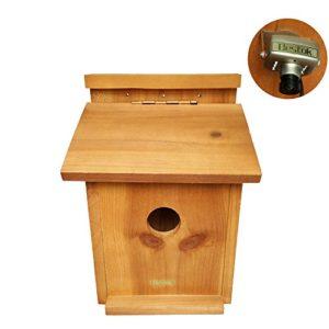 Bestok Nichoir à Oiseaux Caméra Trail Kit Coloré avec Audio Vision Nocturne Infrarouge 72° Portée de Détection Oiseau Nesting Boîte 30m Câble